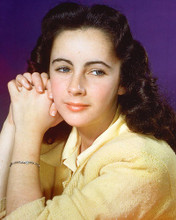 This is an image of 264885 Elizabeth Taylor Photograph & Poster