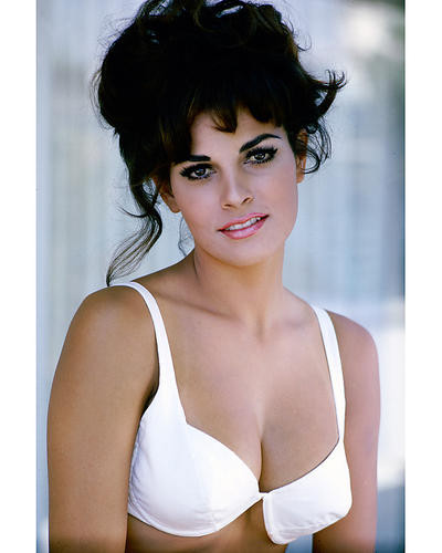 This is an image of 264911 Raquel Welch Photograph & Poster