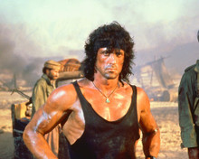 This is an image of 256286 Sylvester Stallone Photograph & Poster