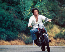 This is an image of 257766 Warren Beatty Photograph & Poster