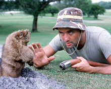 This is an image of 259539 Bill Murray Photograph & Poster