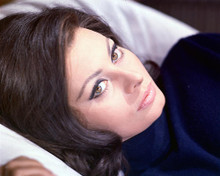 This is an image of 264061 Sophia Loren Photograph & Poster