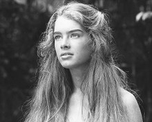 This is an image of 172126 Brooke Shields Photograph & Poster
