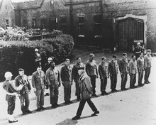 This is an image of 177204 The Dirty Dozen Photograph & Poster