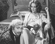 This is an image of 177758 Young Frankenstein Photograph & Poster