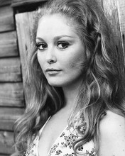 This is an image of 178609 Jenny Hanley Photograph & Poster