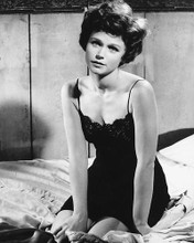 This is an image of 178716 Lee Remick Photograph & Poster