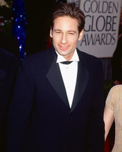 This is an image of 266339 David Duchovny Photograph & Poster