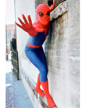 This is an image of 267130 The Amazing Spider-Man Photograph & Poster