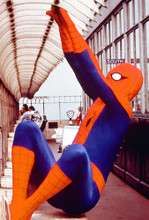This is an image of 267131 The Amazing Spider-Man Photograph & Poster