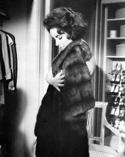 This is an image of 180277 Elizabeth Taylor Photograph & Poster