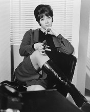 This is an image of 180288 Linda Thorson Photograph & Poster