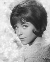 This is an image of 180289 Linda Thorson Photograph & Poster