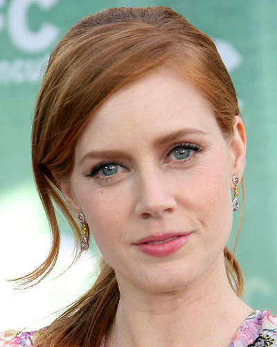 This is an image of 269516 Amy Adams Photograph & Poster