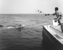 This is an image of 186080 Jaws Photograph & Poster
