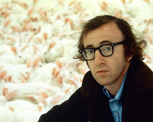 This is an image of 266656 Woody Allen Photograph & Poster