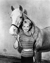 This is an image of 194747 Mr.Ed Photograph & Poster