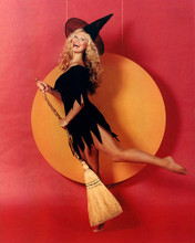 This is an image of 284311 Hee Haw Photograph & Poster