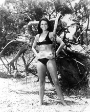 This is an image of 194434 Caroline Munro Photograph & Poster