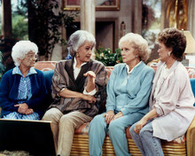 This is an image of 283849 The Golden Girls Photograph & Poster