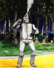 This is an image of 266251 The Wizard of Oz Photograph & Poster