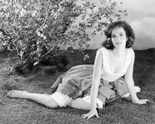 This is an image of 195626 Natalie Wood Photograph & Poster