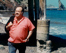 This is an image of 283816 William Conrad Photograph & Poster
