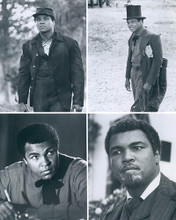 This is an image of 190055 Muhammad Ali Photograph & Poster