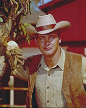 This is an image of 280639 Lee Majors Photograph & Poster
