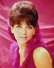 This is an image of 280666 Suzanne Pleshette Photograph & Poster