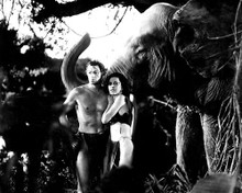 This is an image of 187744 Tarzan Photograph & Poster
