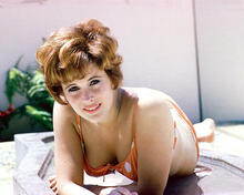 This is an image of 267137 Jill St. John Photograph & Poster