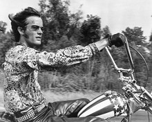 This is an image of 177103 Easy Rider Photograph & Poster