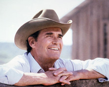 This is an image of 232929 James Garner Photograph & Poster
