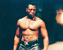 This is an image of 233751 Wesley Snipes Photograph & Poster
