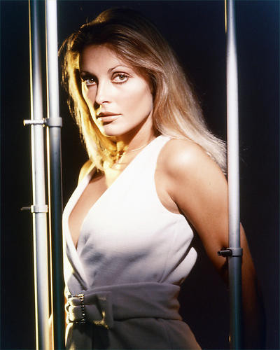 This is an image of 232782 Sharon Tate Photograph & Poster