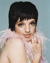 This is an image of 244534 Liza Minnelli Photograph & Poster