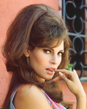 This is an image of 241908 Raquel Welch Photograph & Poster