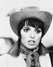 This is an image of 169617 Liza Minnelli Photograph & Poster
