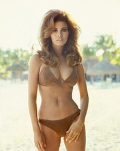 This is an image of 255152 Raquel Welch Photograph & Poster