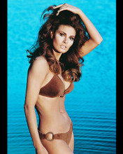 This is an image of 248977 Raquel Welch Photograph & Poster