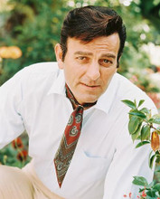 This is an image of 239585 Mike Connors Photograph & Poster
