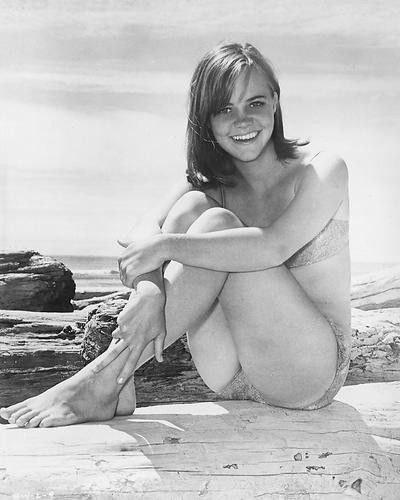 This is an image of 171893 Sally Field Photograph & Poster