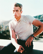 This is an image of 234364 James Dean Photograph & Poster