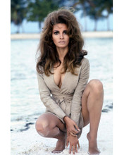 This is an image of 256890 Raquel Welch Photograph & Poster