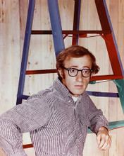 This is an image of 257514 Woody Allen Photograph & Poster