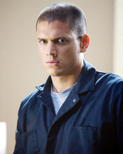 This is an image of 274078 Wentworth Miller Photograph & Poster