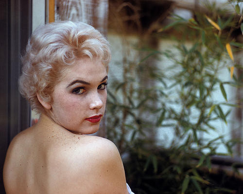 This is an image of Photograph & Poster of Stella Stevens 284221