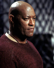 This is an image of Photograph & Poster of Laurence Fishburne 284253