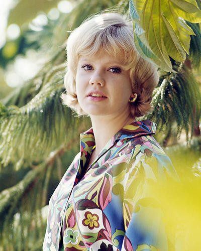 This is an image of Photograph & Poster of Hayley Mills 284390